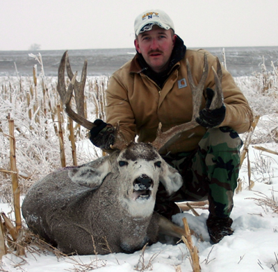 Big Game Mule Deer