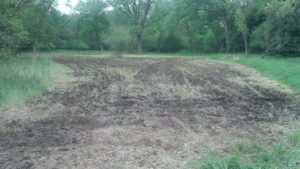 best resource for food plots